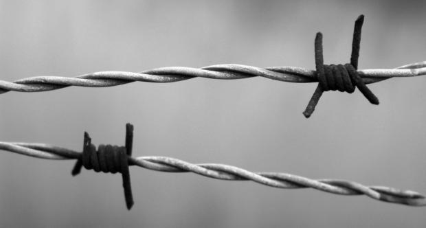 Promemoria_Auschwitz
