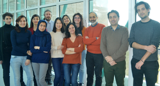 Gruppo di ricerca Prof. Oliviero.png