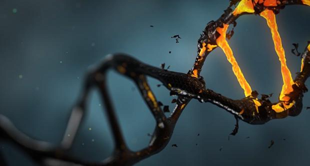 nanotecnologia tumori unito