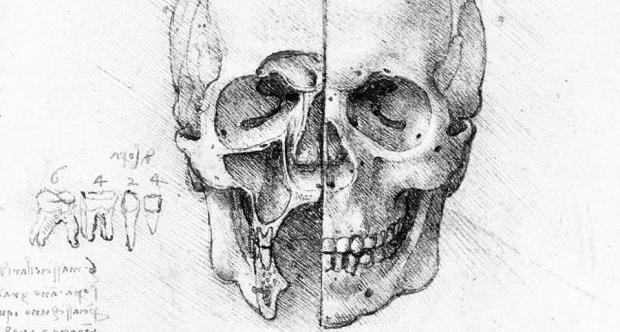 odontoiatria forense